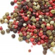 Mix of peppercorns — Photo