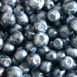 Stock Photo: Bilberry background