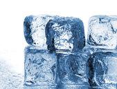 Melting ice — Stock Photo