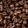 Coffee beans texture — Stock Photo