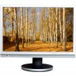Stock Photo: Widescreen LCD panel with landscape on screen.