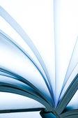 Pagina's van een boek — Stockfoto