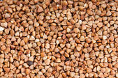 Buckwheat texture — Stock Photo
