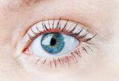 Human blue eye. macro shooting — Stock Photo