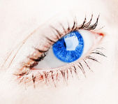 Beautiful blue eye — Stock Photo
