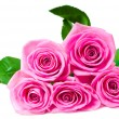 Bouquet of beautiful pink roses - Stock Photo