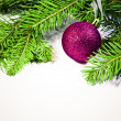 Royalty-Free Stock Photo: Pine branches and xmas ball isolated