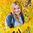 Stock Photo: Close up portrait of autumn woman with yellow leaves
