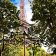 Vertical oriented image famous Eiffel Tower in Paris, France. — Stock Photo #21576825