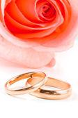 Twee gouden trouwringen naast een roze roos. — Stockfoto