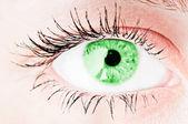 Ludzkie oko. zdjęć makro — Zdjęcie stockowe
