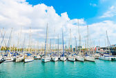 Beautiful white yachts at sea port with blue cloudy sky in backg — Stock Photo