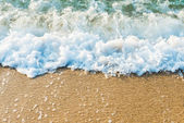 Sandy beach of sea — Stock Photo