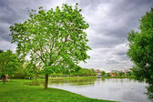 Lake at the urban park, Moscow, Russia — Stock Photo