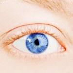 Human blue eye. macro shooting — Stock Photo