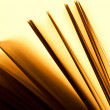 Pages of a book — Stock Photo #22851398