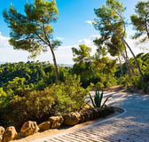 Path in the Parc Guell designed, Barcelona, Spain. — Photo