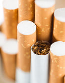 Tobacco in cigarettes with a brown filter close up — Stock fotografie