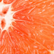 Macro of red grapefruit — Stock Photo