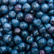 Blueberries as background — Lizenzfreies Foto