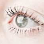 Grey human eye. — Stock Photo #29822533