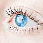 Blue human eye. macro shooting — Stock Photo