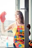 快乐的年轻女人的家庭主妇洗一个窗口 — 图库照片
