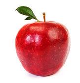 Fresh red apple on white background — Stock Photo