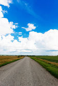 Asphalt road through green field and clouds — Stock Photo