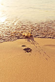 Footprint on sand with waves — Stockfoto