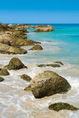 Tropical stones beach — Stock Photo