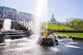 Samson Fountain of the Grand Cascade near Peterhof Palace.  — Stock Photo