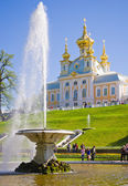 The Bowl Fountain in Peterhof — Stock Photo