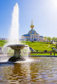 The Bowl Fountain in Peterhof. — Stock Photo
