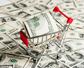 Dollars in Shopping Cart — Stock Photo