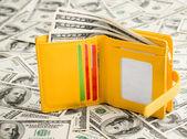 Plånbok vilar på dollar — Stockfoto