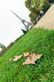Autumn leaves on the grass, near the Eiffel Tower — Stock Photo