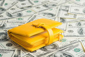 Yellow Wallet   on Dollars — Foto Stock