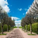 Tsarskoye Selo — Stock Photo #47422941