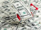 Dollars in Shopping Cart  — Stock Photo