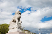 Chinese Lion Shi-tsza, St Petersburg — Stock Photo