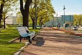City park. Saint-Petersburg — Stock Photo