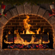 Yule Log — Stock Photo #14534269