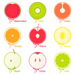 Fruits icons / design elements — Wektor stockowy  #16230003