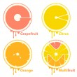 Stock Vector: Citrus fruits icons / design elements
