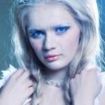 Winter queen — Stock Photo #21827063