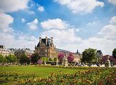 Lente in parijs — Stockfoto