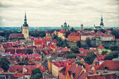 Tallinn Old Town — Stock Photo