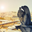 Gallery of chimera, Notre Dame de Paris — Stock Photo