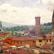 Beautiful Florence — 图库照片